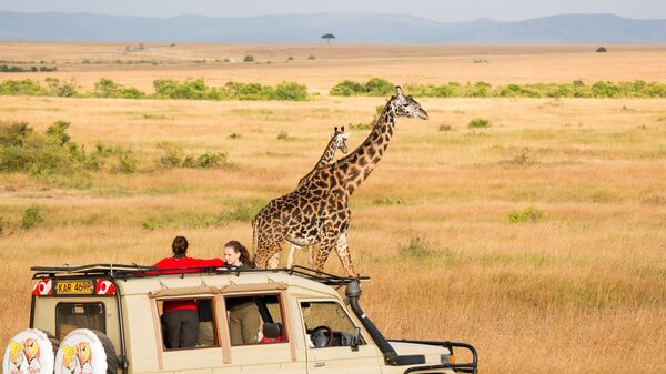 Национальный заповедник Масаи-Мара в Кении