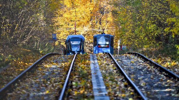 Краснодар попросит скорректировать нормы для развития трамвайной сети