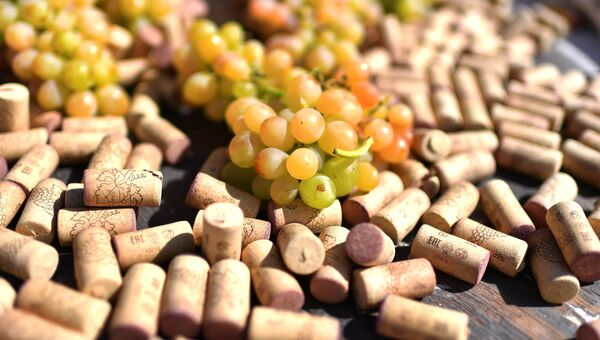 Фестиваль молодого вина «WineFest» в Балаклаве
