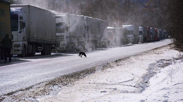 Грузовые автомобили на обочине Военно-Грузинской дороги
