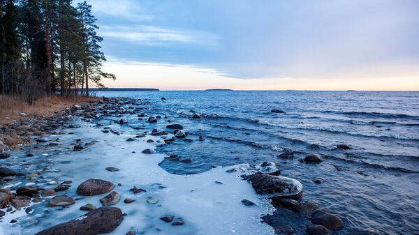 Побережье Онежского озера в Прионежском районе Республики Карелия. Архивное фото