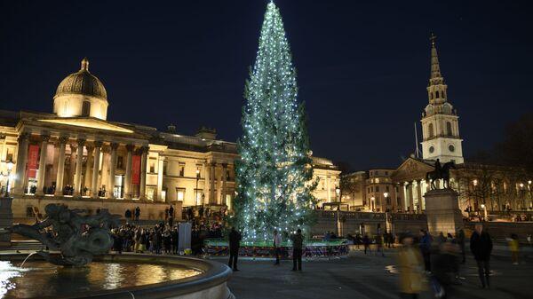Рождественская ель на Трафальгарской площади в Лондоне