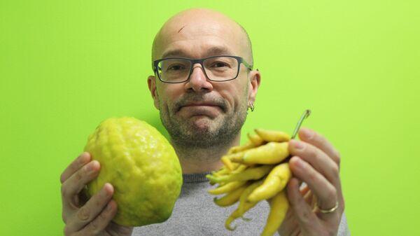 Современный сладкий цитрон и его кислый предок – дикие Пальцы Будды