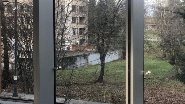 Необычный вид из окна