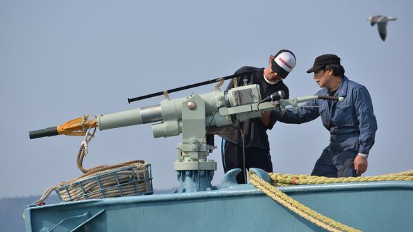 Экипаж китобойного судна проверяет оружие, Япония