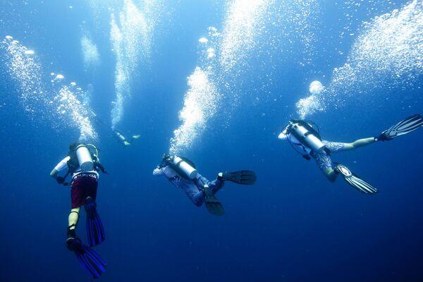 Аквалангисты в Индийском океане