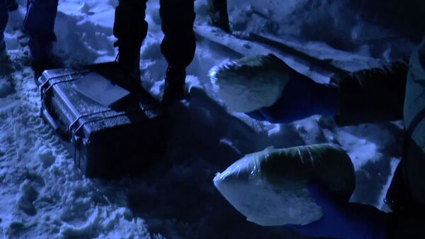 Наркотические средства, изъятые сотрудниками ФСБ РФ при задержании преступной группы лиц в Москве