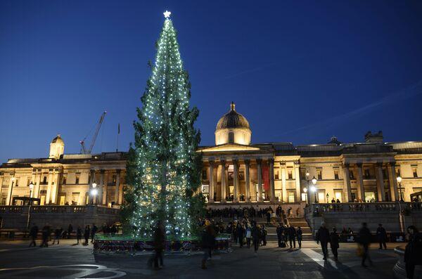 Главная рождественская ель в Лондоне