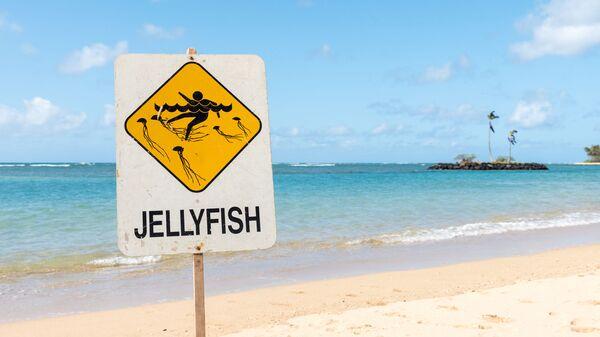 Знак, предупреждающий о наличии медуз