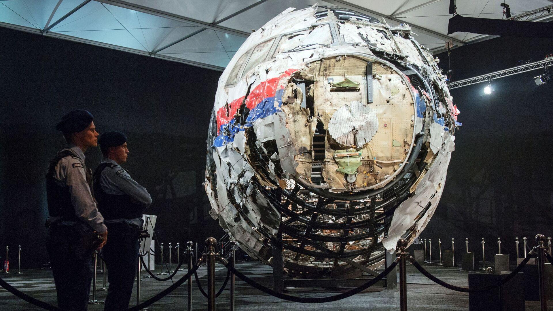 Мария Кнайф: расследование по делу MH17 не завершено, еще много работы