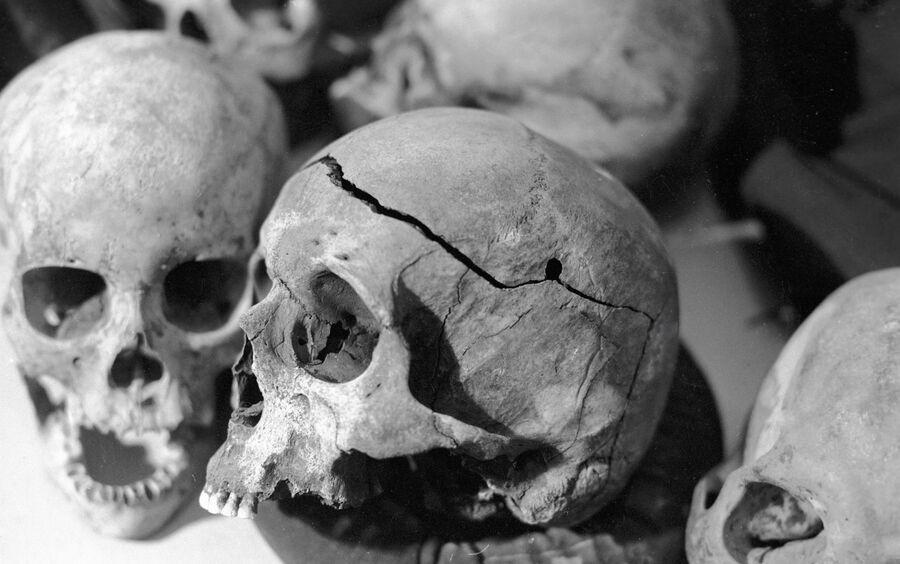 Черепа расстрелянных в годы сталинских репрессий из мест массовых захоронений на задворках тюрьмы по улице Поселок Крутоовражный