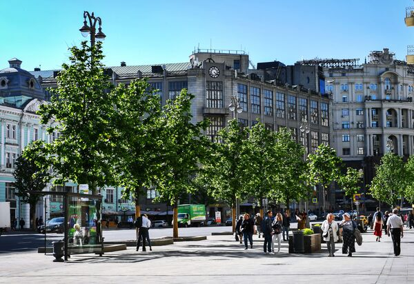 Липы на Тверской улице в Москве