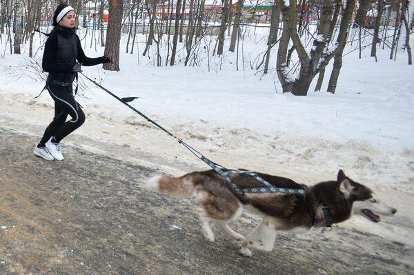 Рождественский Пушистый забег в парке Кузьминки