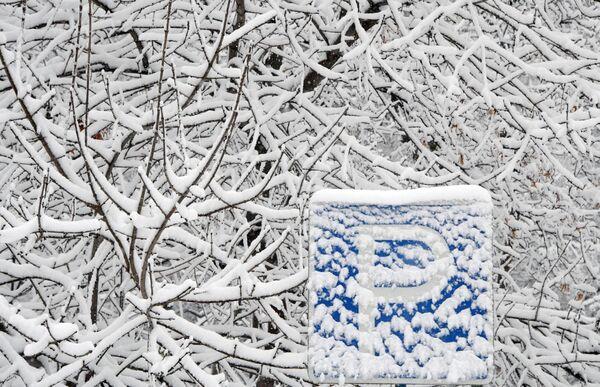 Снег на ветвях деревьев и дорожном знаке на Ленинском проспекте в Москве