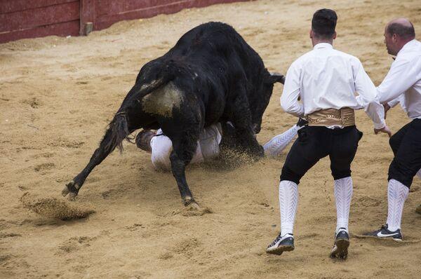 Рекортадоры во время корриды на карнавале быков в Сьюдад-Родриго