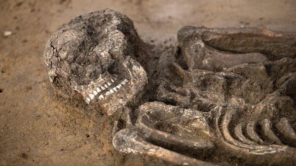 © AP Photo / dpa / Daniel KarmannСкелет молодого человека, жившего 6500 лет назад, обнаруженный археологами в Баварии, Германия