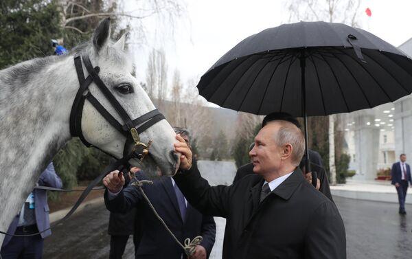 Президент РФ Владимир Путин с подаренным президентом Киргизии Сооронбаем Жээнбековым Орловским рысаком в Бишкеке