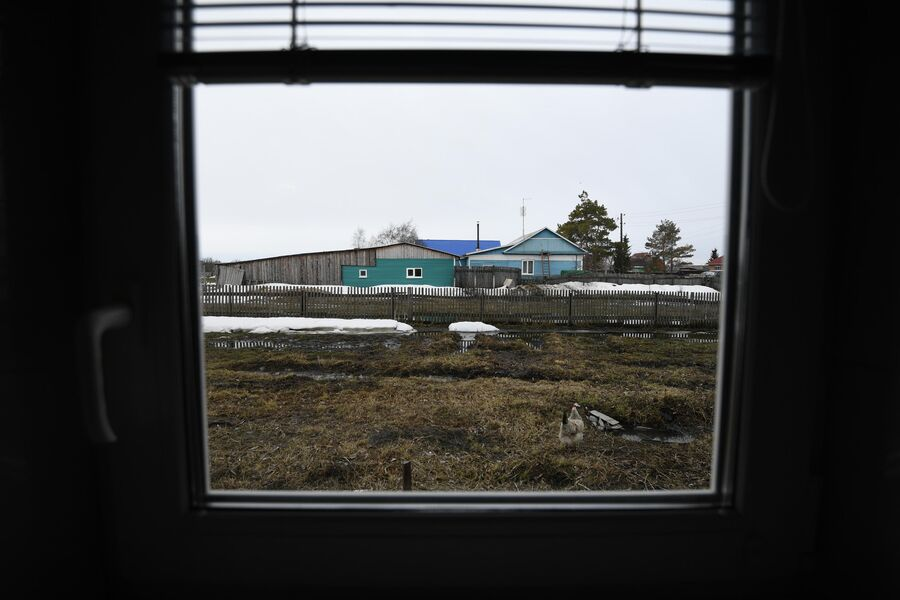 Дом семьи Паульсов. Вид из окна