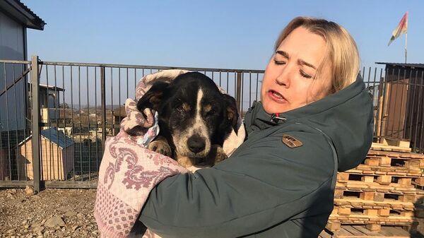 Собака, которую ее хозяева сочли умершей и похоронили, в приюте Открой свое сердце в Уссурийске
