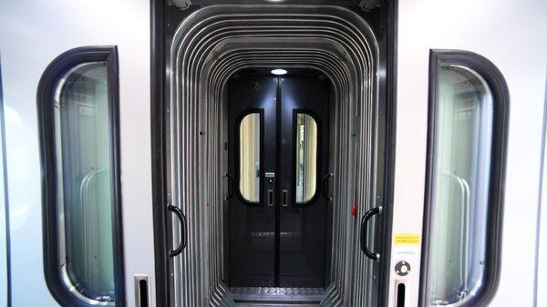 Двухвагонный сцеп с герметизированным переходом в поезде дальнего следования на Рижском вокзале в Москве