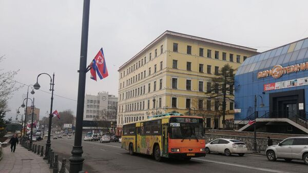 Флаги России и Северной Кореи на Алеутской улице Владивостока