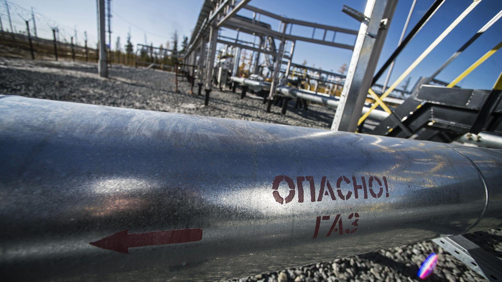 Россия прорабатывает создание нефтехимического кластера на Ямале
