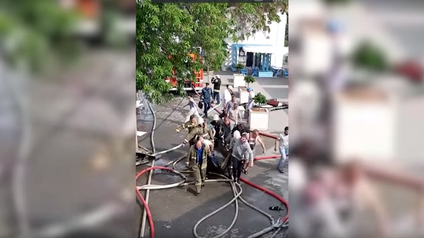 Спасение дельфинов при пожаре в Севастополе