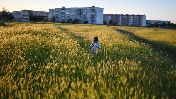 Ребенок гуляет по полю в поселке Мирный в Крыму