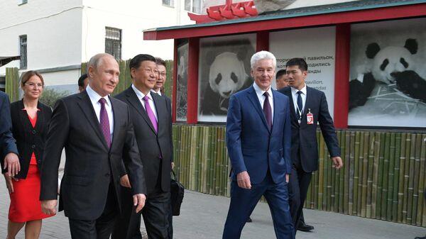 Владимир Путин и председатель КНР Си Цзиньпин принимают участие в официальной церемонии передачи правительством Китая двух больших панд Московскому зоопарку. 5 июня 2019