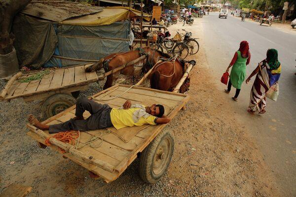 Владелец повозки спит на окраине города Прайаградж, штат Уттар-Прадеш, Индия