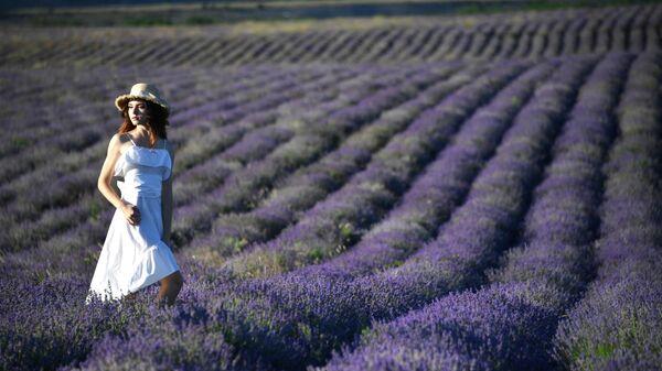 Девушка фотографируется на лавандовых полях в окрестностях села Тургеневка Республики Крым