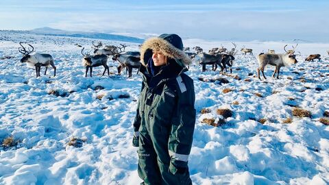Наталия Белякова со стадом оленей на Чукотке