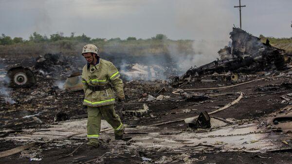 На месте крушения малайзийского самолета Boeing 777 в районе города Шахтерск Донецкой областиКрушение малайзийского Boeing на Украине