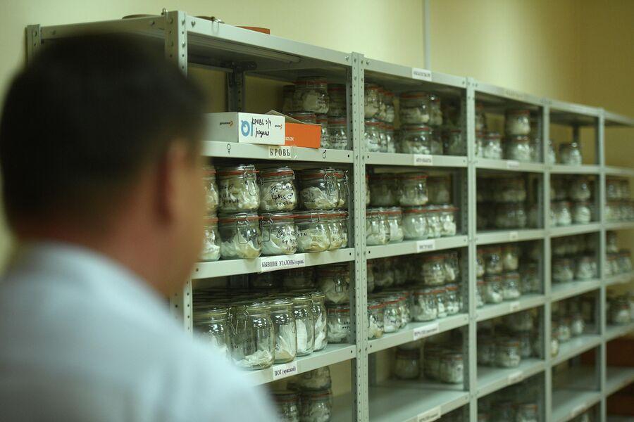 Процесс проведения экспертизы запаховых следов человека в ЭКЦ ГУ МВД России по Московской области