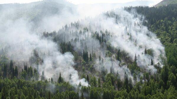 Очаги лесных пожаров в Красноярском крае