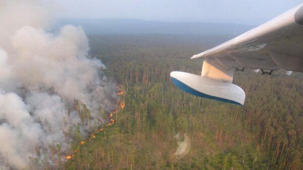 Лесной пожар в Красноярском крае. 31 июля 2019