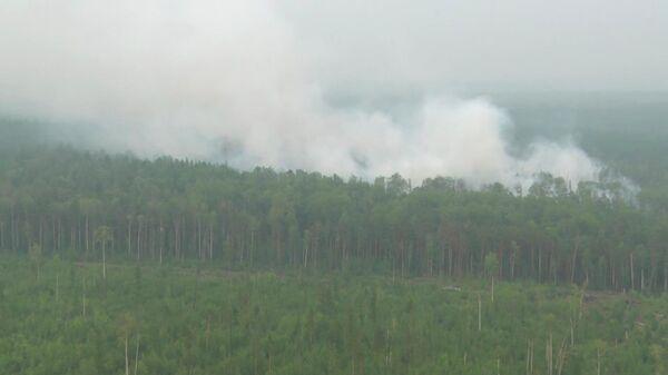 Ликвидация лесных пожаров в Красноярском крае. 1 августа 2019
