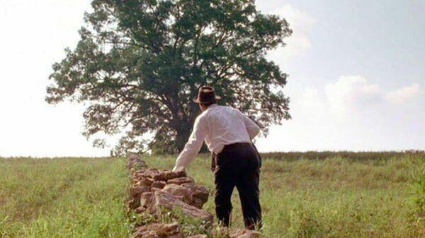 Кадр из фильма Побег из Шоушенка