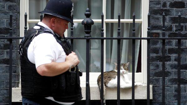 Сотрудник британской полиции на Даунинг-стрит, 10 в Лондоне