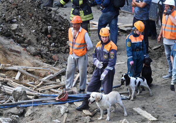 Сотрудники МЧС РФ с собаками на месте завалов, где обрушилось перекрытие в строящемся здании в Новосибирске