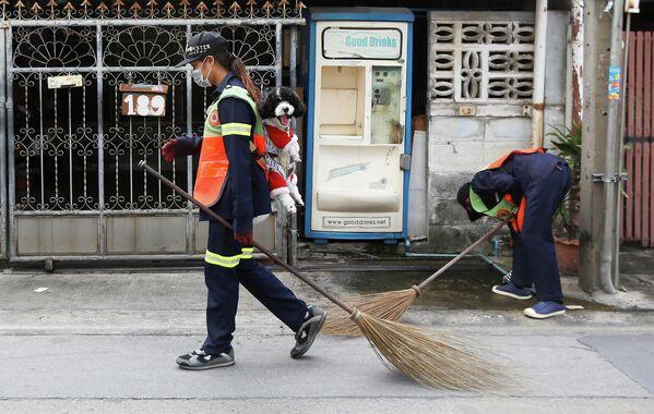 Дворник из Бангкока убирает улицу вместе со своим годовалым псом