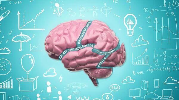 Язык связывает различные когнитивные функции, которые без него существуют отдельно.