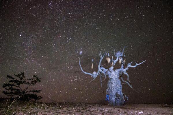 Скульптура Даши Намдакова Хранитель Байкала, установленная на острове Ольхон озера Байкал в Иркутской области
