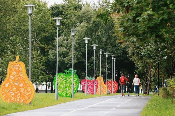Аллея в парке Яблоневый сад в Западном Бирюлеве в Москве