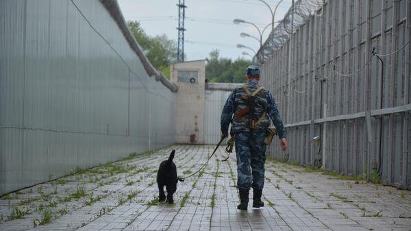 Сотрудник со служебной собакой патрулируют периметр исправительного учреждения
