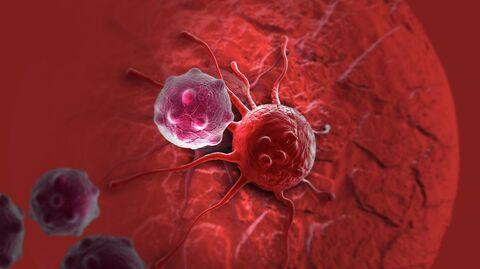 Раковая клетка 3D