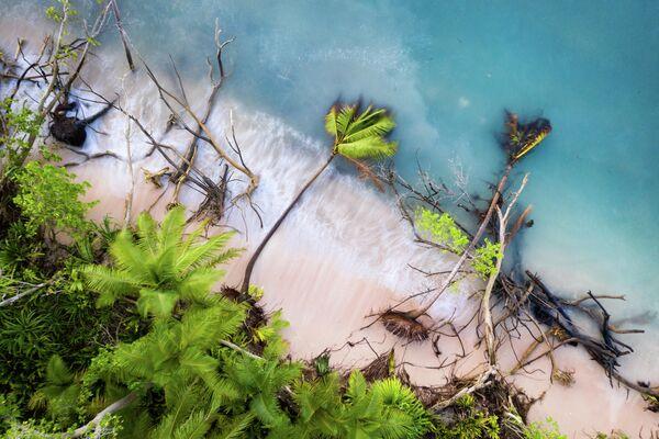 Sean Gallagher. Работа победителя конкурса Environmental Photographer of the Year 2019