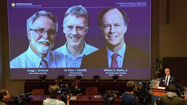 Объявление лауреатов Нобелевской премии по медицине 2019 года в Стокгольме