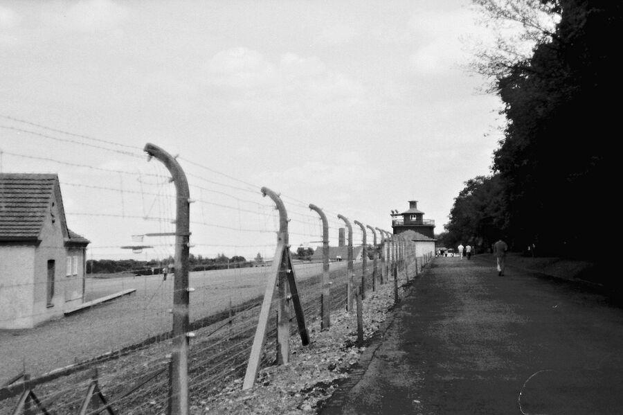 Медаль лагерей смерти: картина ужасов Бухенвальда на медном диске