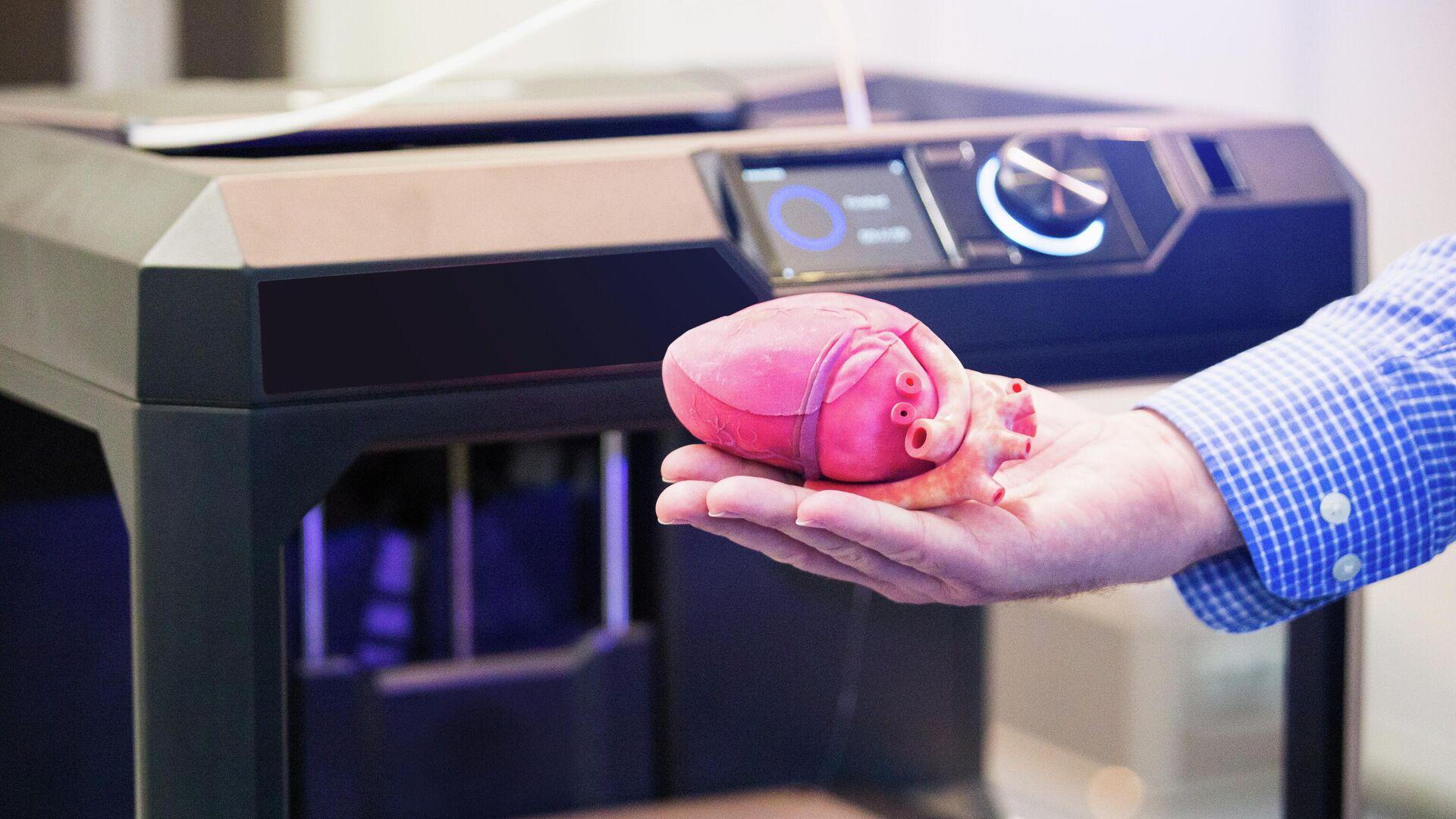 Сердце напечатанное на 3D-принтере - РИА Новости, 1920, 18.02.2020
